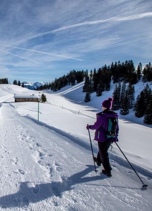 gruesch-danusa_winterwanderweg_hochformat