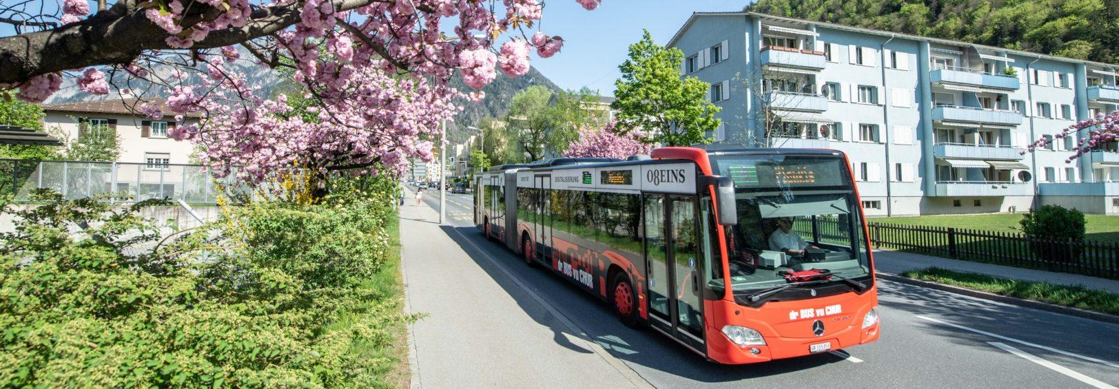 Chur_Bus_Frühling_nu_003_1130_auschnitt