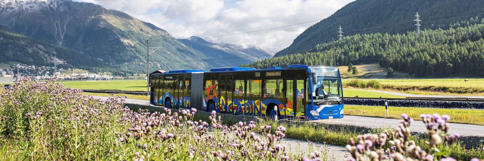 Engadin Bus Sommer Gelenkbus 1500x500